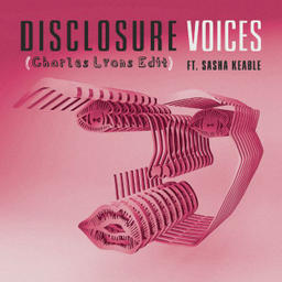 Voices (feat. Sasha Keable)