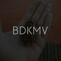 bitch don't kill my vibe [kendrick]