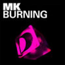 Burning (Original Vibe Mix)