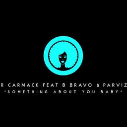 something about you baby (feat. b. bravo & parvizi)