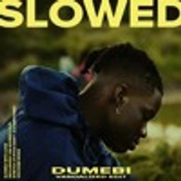 Dumebi ( Vandalized Edit ) [SLOW DAT SH*T]