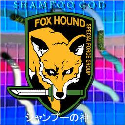 F O X HOUND