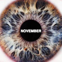 Summer in November
