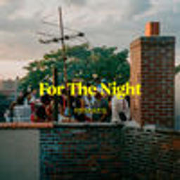 For The Night (Jaël Remix)