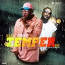 Temper (feat. Burna Boy) [Remix]