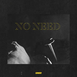 no need [radio edit]