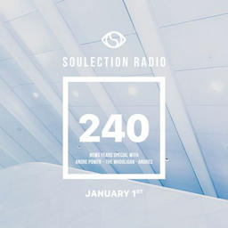 Show #240 (Soulection Family New Year's Special)