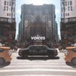 Voices (feat. Neguim)