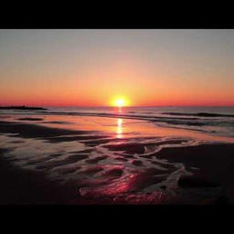 Bonita Applebum (Instrumental)