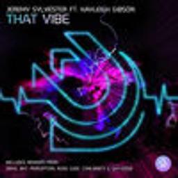 That Vibe (feat. Kayleigh Gibson) [DEM2 Shukdat Mix]