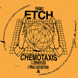 Chemotaxis